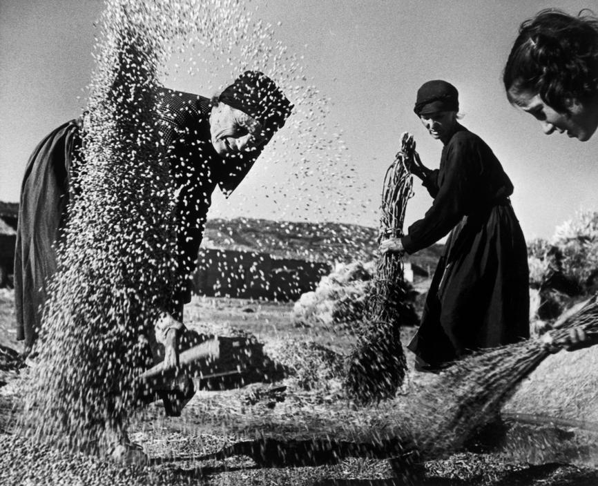 """Eugene Smith © Magnum 1951 SPAIN. Village of Deleitosa in Western Spain. 1951. - SPAIN. Extremadura. Province of Caceres. Deleitosa. 1951. Villagers beating the corn kernels after the harvest. Once the straw is broken away, the wheat kernels are swept into a pile and tossed into the air. From """"Spanish Village"""" photo-essay. - W-Eugene--Smith SPAIN. Extremadura. Province of Caceres. Deleitosa. 1951. Villagers beating the corn kernels after the harvest. Once the straw is broken away, the wheat kernels are swept into a pile and tossed into the air. From """"Spanish Village"""" photo-essay."""